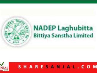 Nadep Laghubitta Bittiya Sanstha