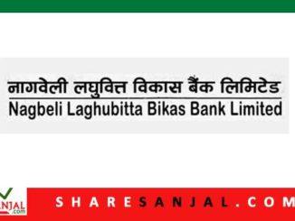Nagbeli Laghubitta Bittiya Sanstha