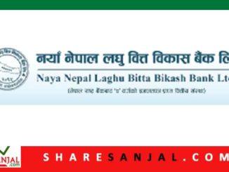 Naya Nepal Laghubitta Bittiya Sanstha