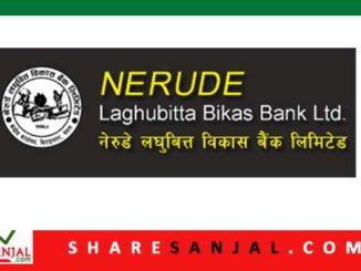 Nerude Laghubitta Bittiya Sanstha
