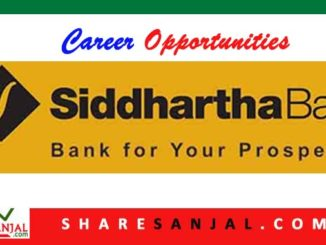 job at siddhartha bank